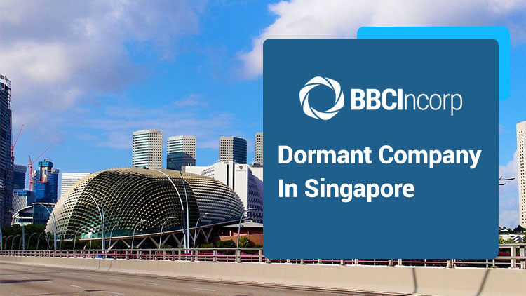 Everything You Need to Know About Dormant Company in Singapore