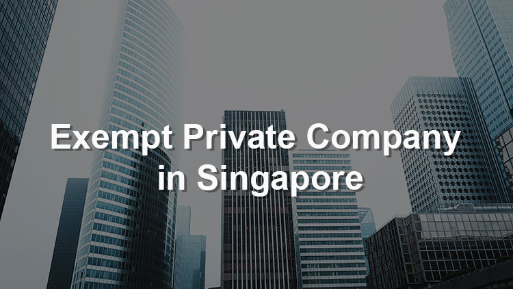 An Introduction to Exempt Private Company in Singapore