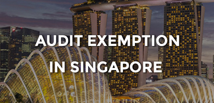 How to Qualify for Audit Exemption in Singapore