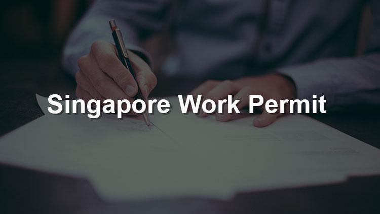 Understand Singapore Work Permit In 10 minutes