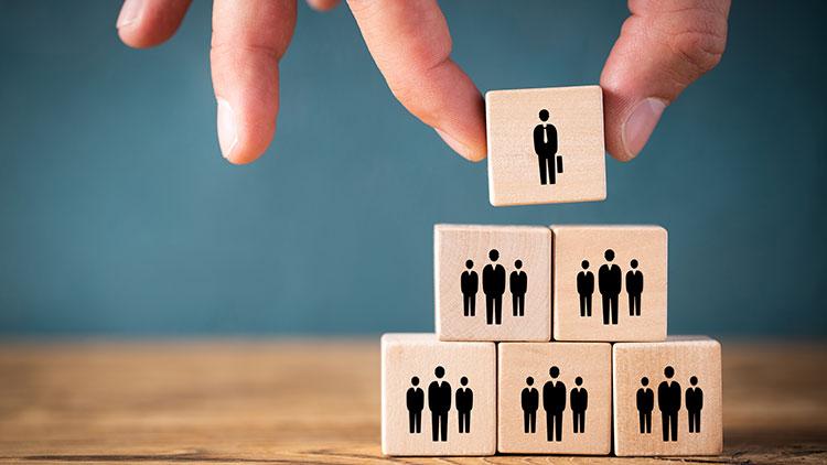 employee structure illustration