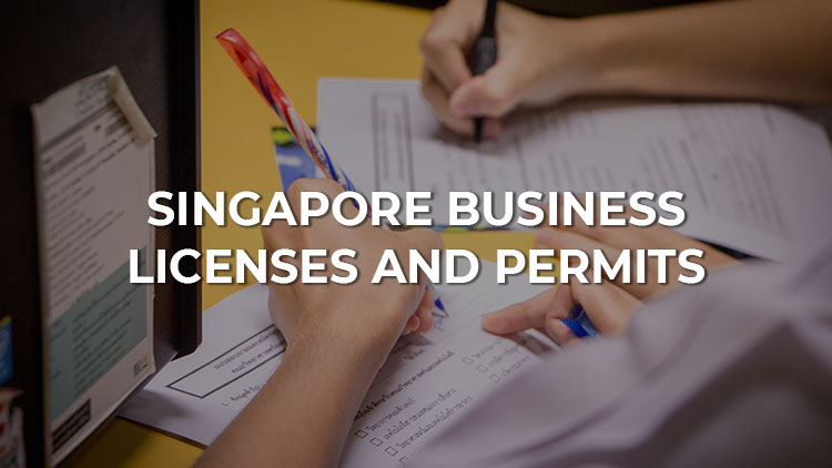 Business Licenses and Permits in Singapore