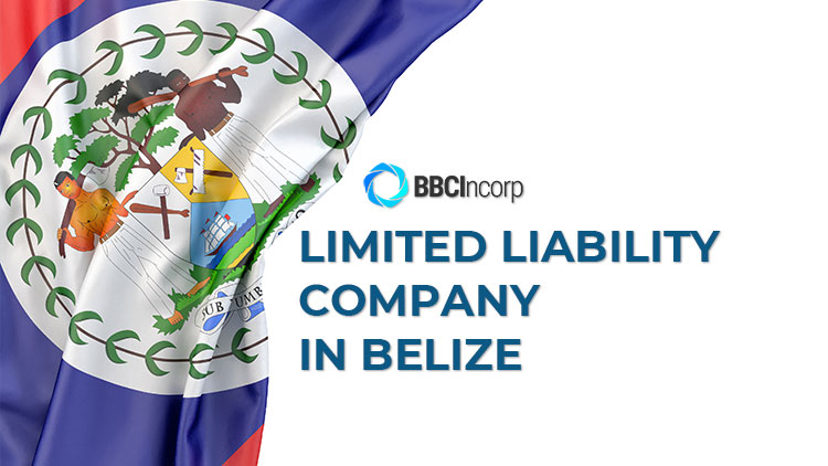 understand-belize-limited-liability-company-llc