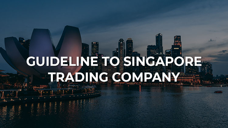 A Thorough Guide to Trading Company in Singapore