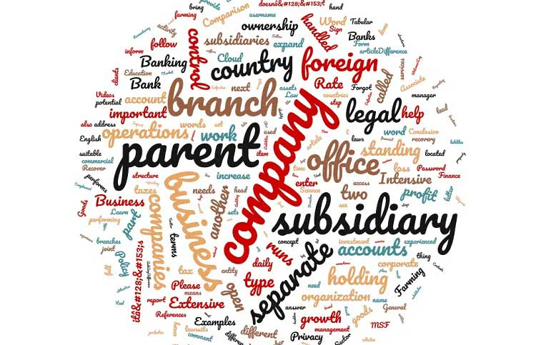 Difference between branch vs subsidiary vs representative office