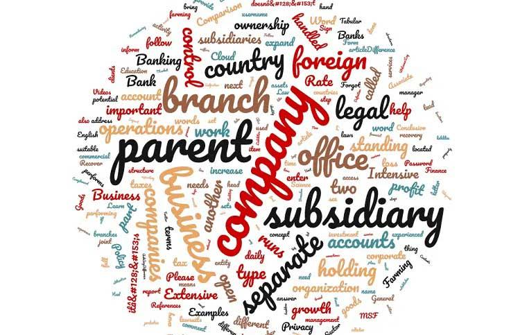 Branch vs Subsidiary vs Representative Office in Hong Kong: Key Differences
