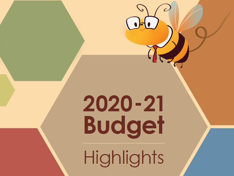 Hong Kong Budget 2020/2021