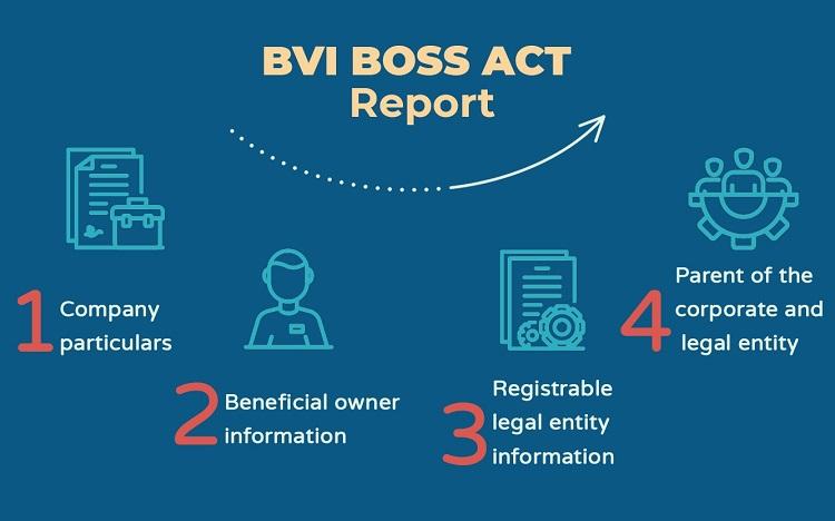 bvi-boss-reporting