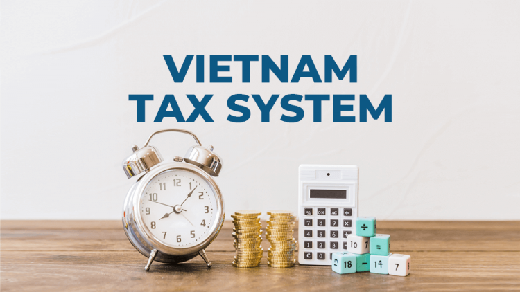 vn-tax-system