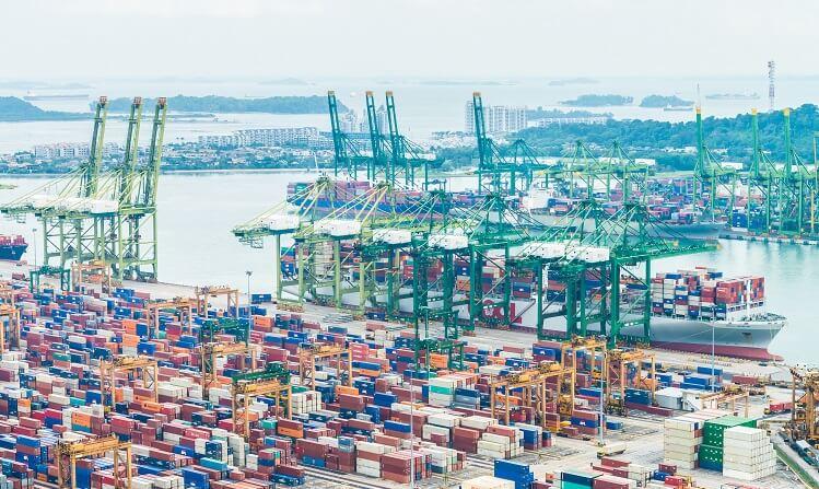 vietnam-import-license