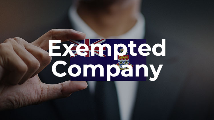 a-guide-to-exempted-company-in-cayman-islands