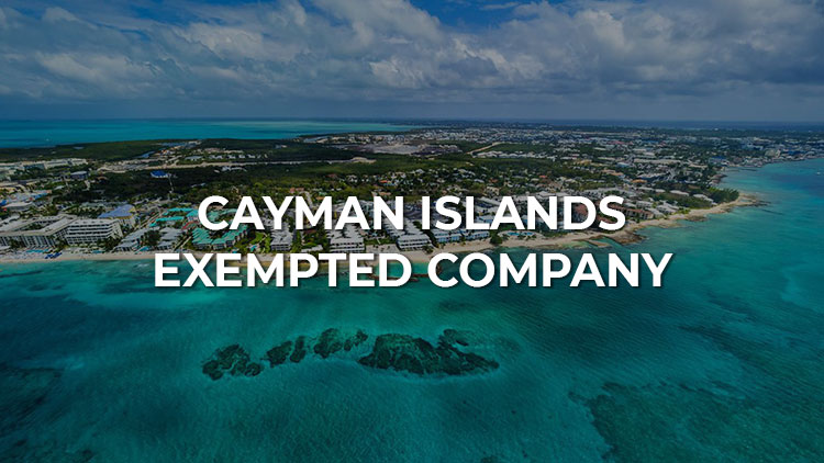A guide to Exempted Company in Cayman Islands