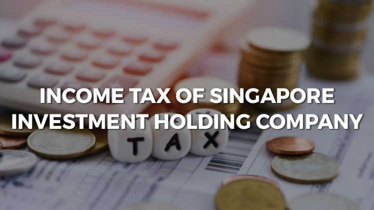 Income Tax Of Singapore Investment Holding Company