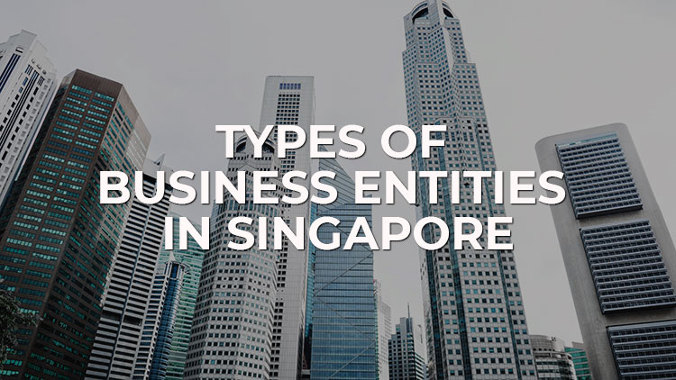 guide-to-types-of-companies-in-singapore