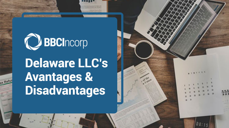 Delaware LLC with its benefits and drawbacks