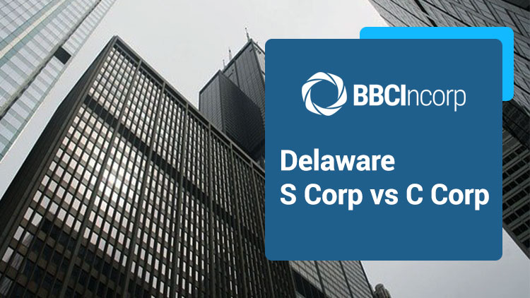 Delaware S Corp vs C Corp And Issues That Differentiate Them