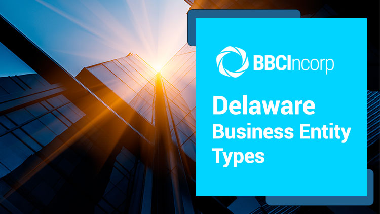 Most Common Types of Business Entities in Delaware