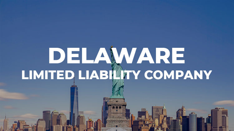 Uncover Delaware LLCs in 8 questions