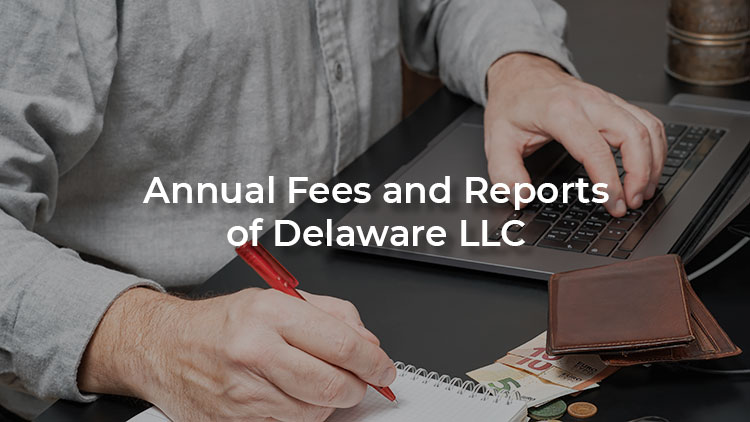 Cover for Delaware LLC annual fees and report