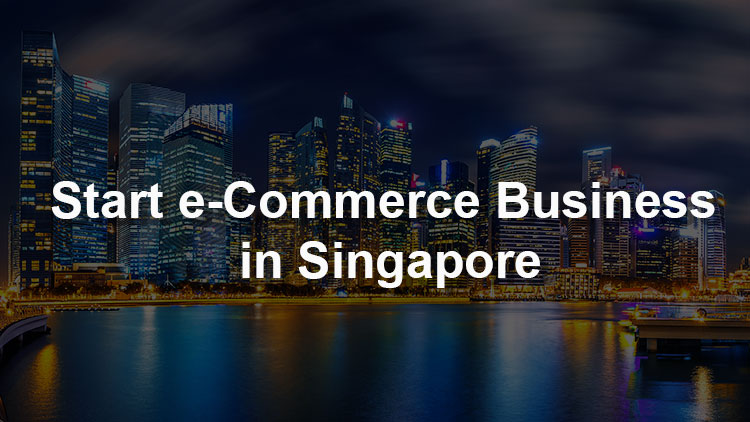 How to Start an e-Commerce Business in Singapore: The Definitive Guide