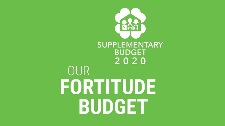 Overview of the Fortitude Budget: Additional Support for Businesses