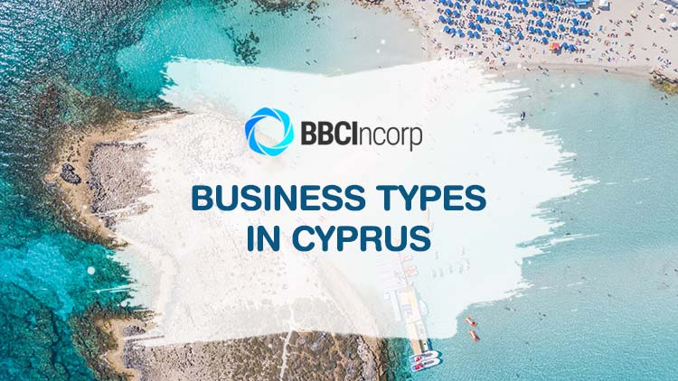 Types of Businesses in Cyprus:  Key Factor That Defines Your Success
